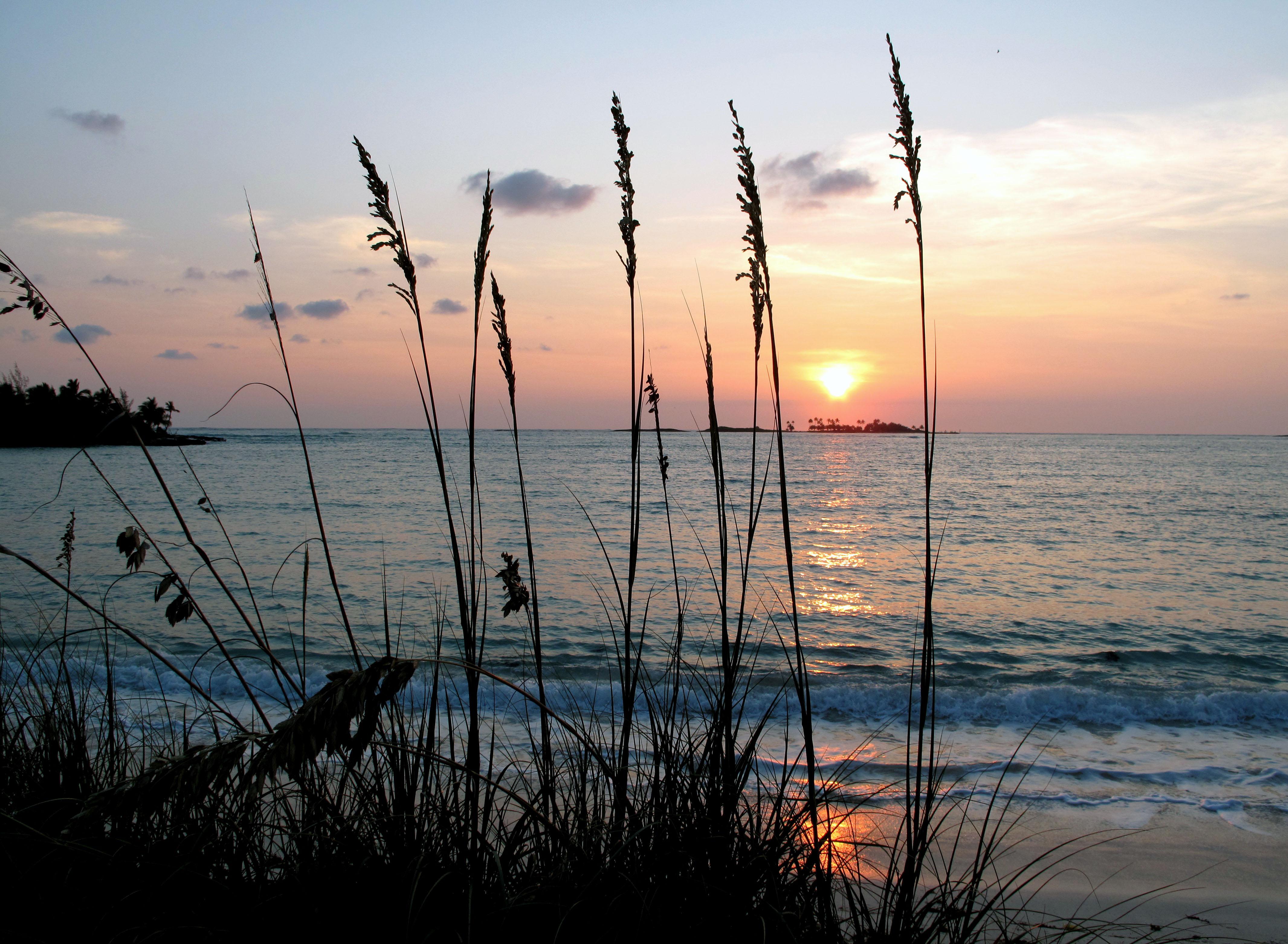 bahamas, abaco, green turtle cay, gillam bay, sunrise