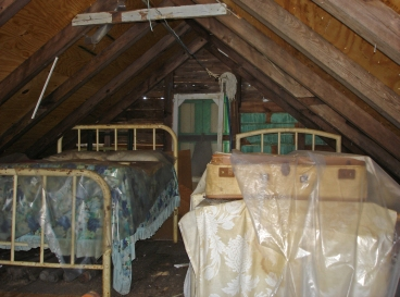 The attic (site of our future master bedroom)