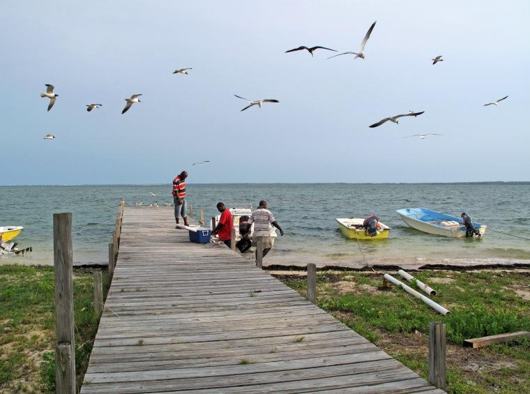 bahamas, abaco, green turtle cay, fishermen