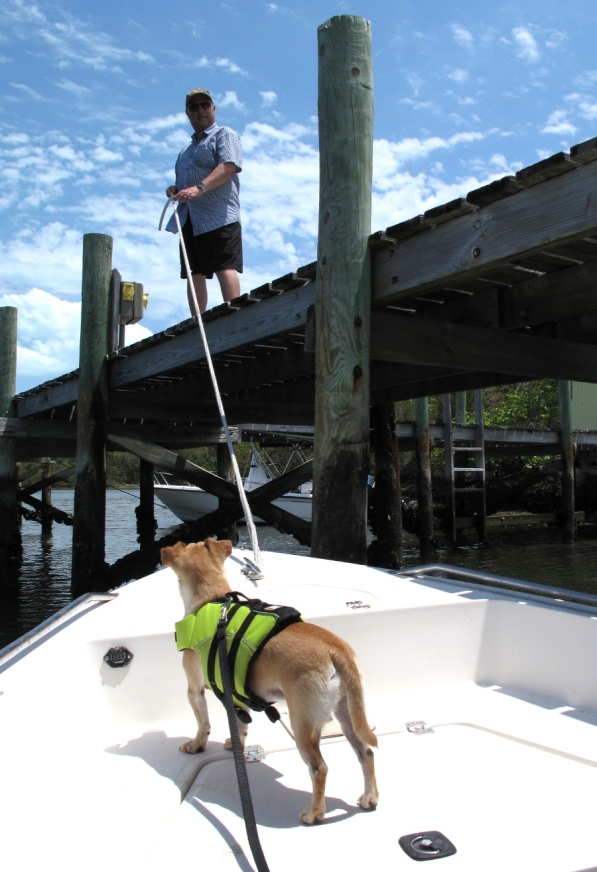 abaco, bahamas, green turtle cay, boating, travel with pets, travel photography