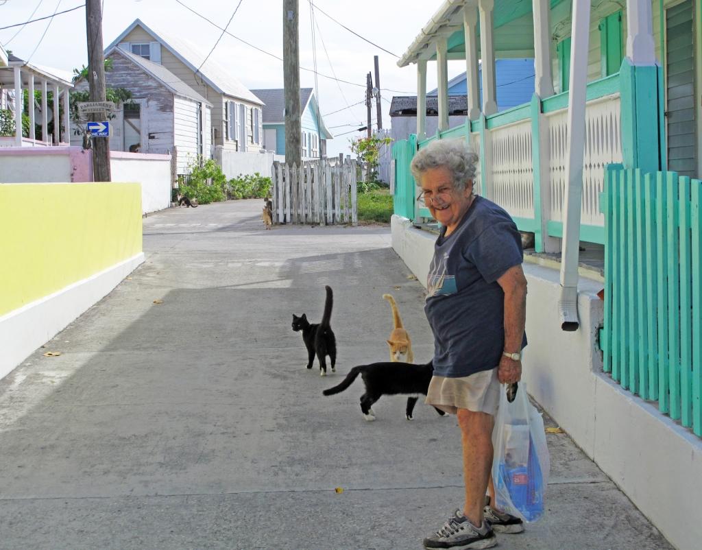 Abaco, Bahamas, Green Turtle Cay, Shirley Roberts, Stray Cats