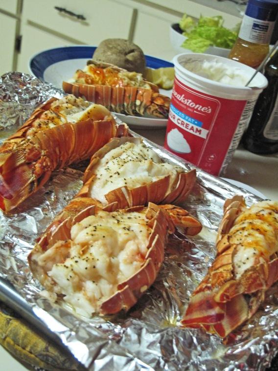 crawfish, lobster, abaco, bahamas, green turtle cay