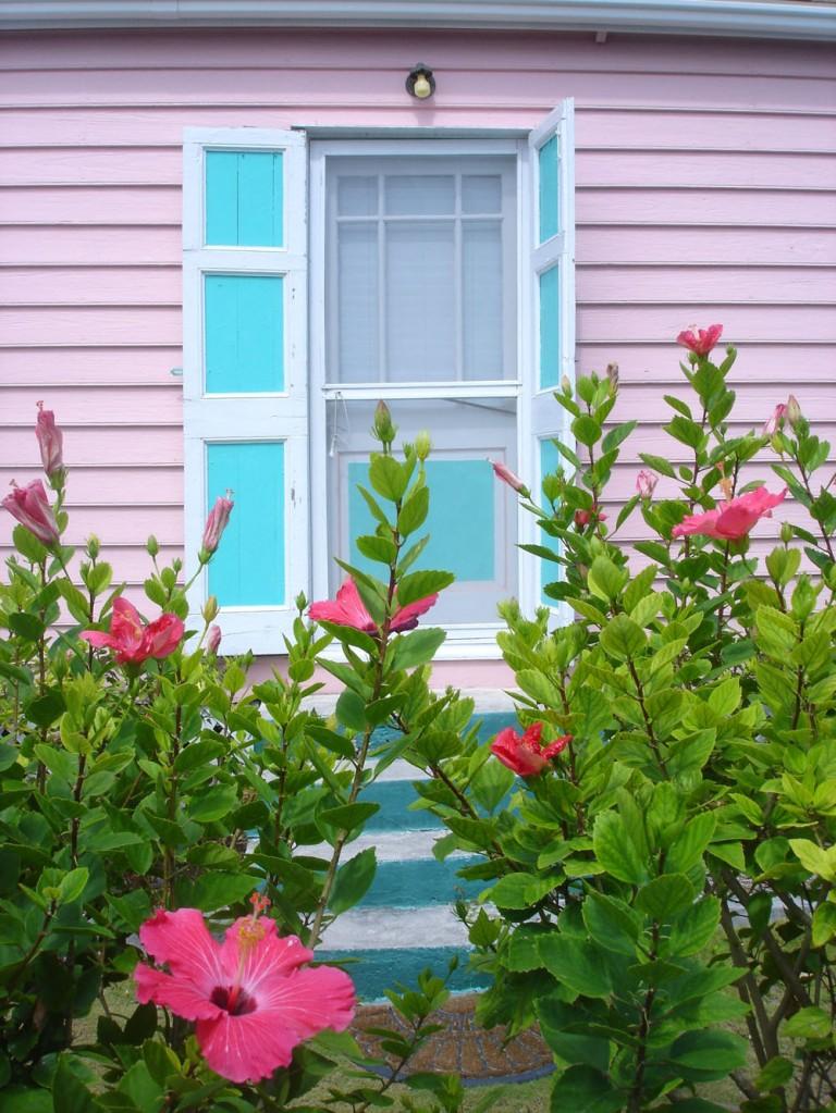 bahamas, abaco, hope town, hibiscus