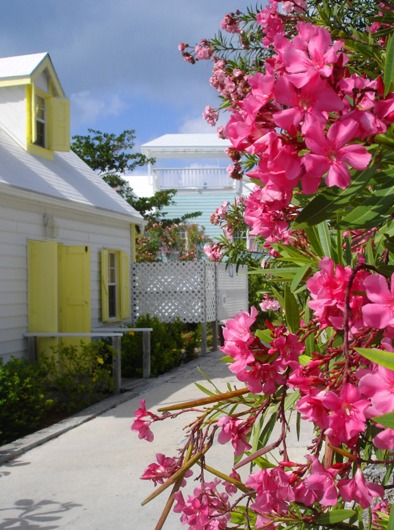 bahamas, abaco, elbow cay, hope town