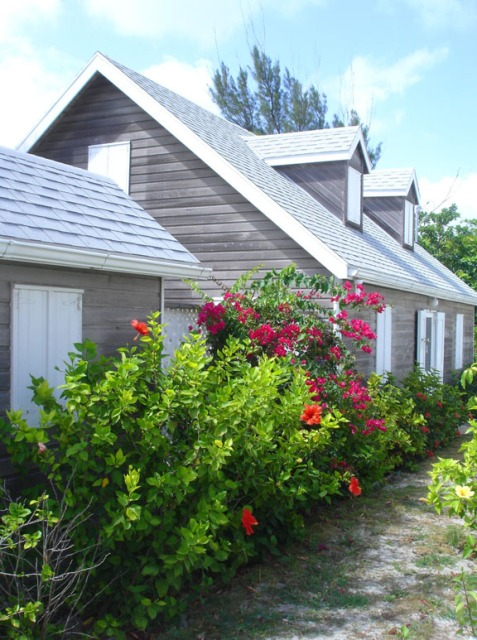 bahamas, abaco, hope town, beach house, tropical flower, travel