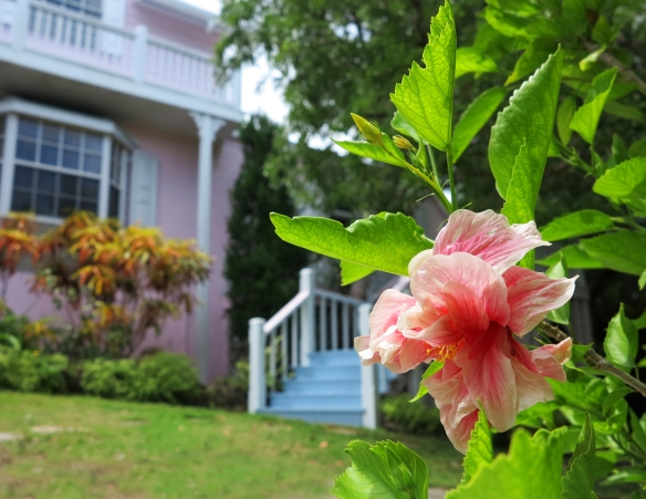 bahamas, abaco, green turtle cay, lowe art gallery, alton lowe,  james mastin