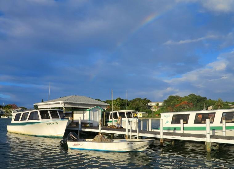 bahamas, abaco, green turtle cay, ferry, rainbow