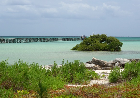 The harbour at Cherokee Sound, Abaco, Bahamas.