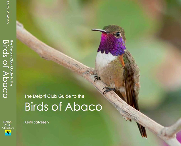 delphi-club-guide-to-the-birds-of-abaco-jacket
