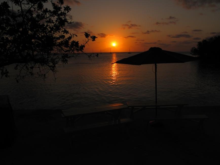 bahamas, abaco, green turtle cay, pineapples