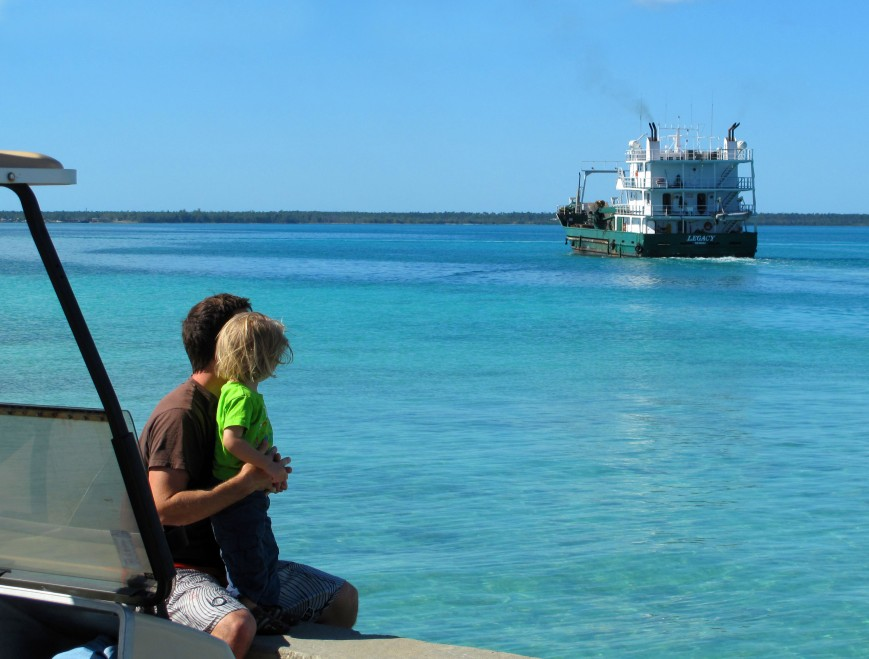 If it didn't grow here on Green Turtle Cay, it likely arrived via our mailboat, the Legacy.