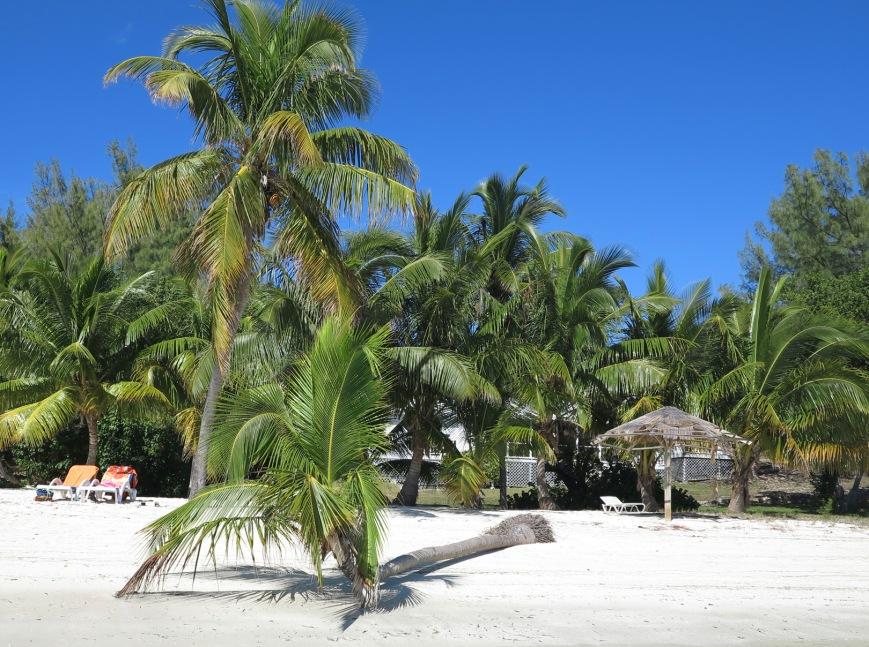 Bluff House Beach, Green Turtle Cay, Bahamas