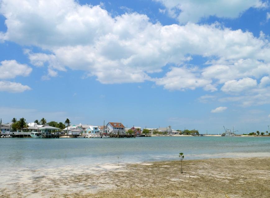 Low tide in Settlement Creek - Green Turtle Cay, Abaco, Bahamas.