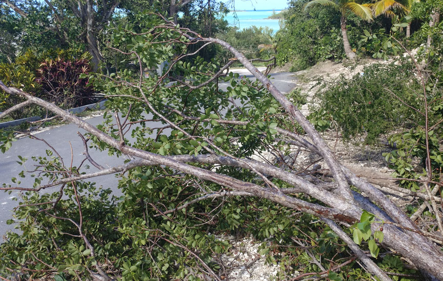 Suspected Tornado Touches Down in Green Turtle Cay
